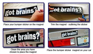 The Original Bumper Sticker Magnet - 4&quot; x 12&quot;
