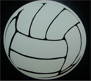 Volleyball Car Magnet